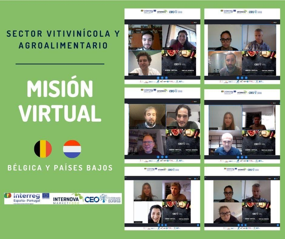 Mision Virtual CEO
